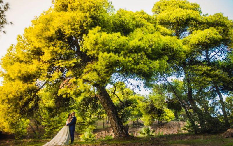 Γάμος στο Κτήμα Γρέγου